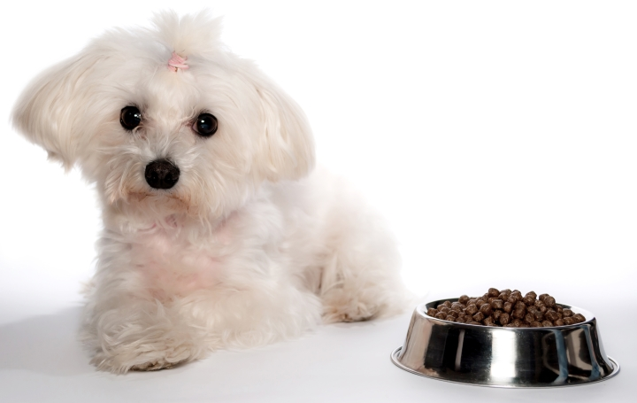 Dog Food Pink Bag Breed Specific