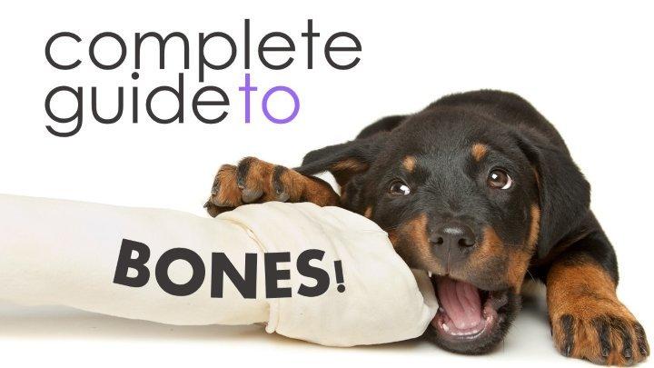 Dental Bones For Dogs Reviews