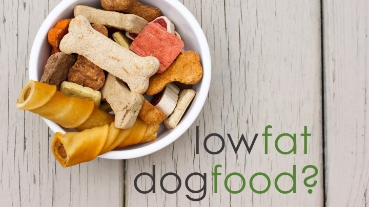 What is the best low fat diet for dogs