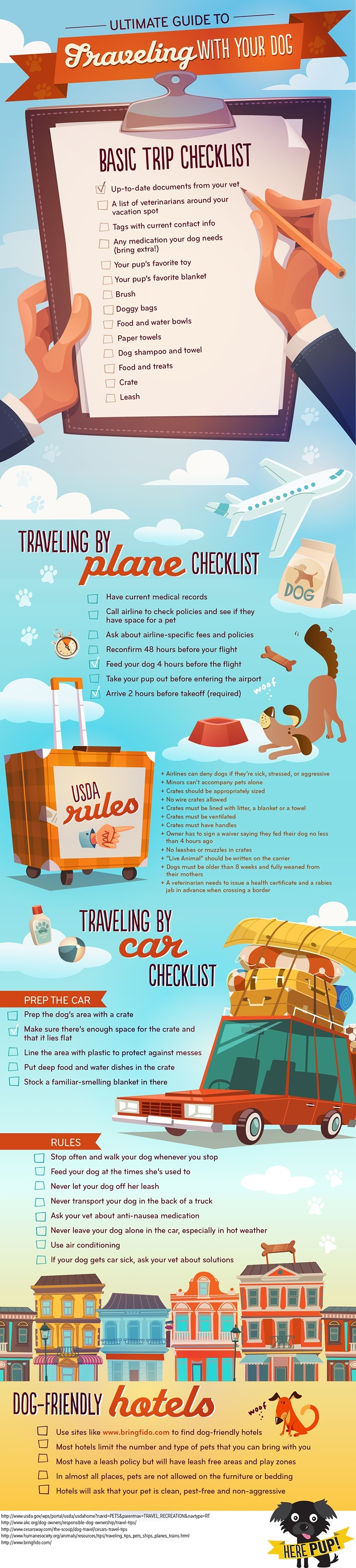 Ultimate Guide to Traveling with Your Dog