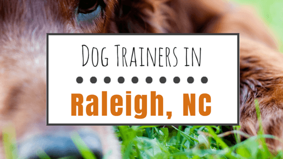 Dog Trainers in Raleigh NC
