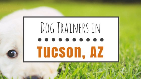 Dog Trainers in Tucson AZ