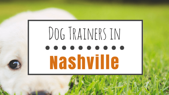 Dog Trainers in Nashville TN