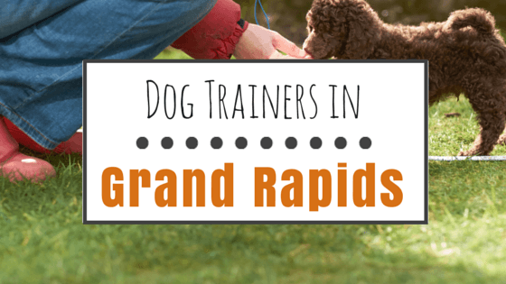 Dog Training in Grand Rapids MI