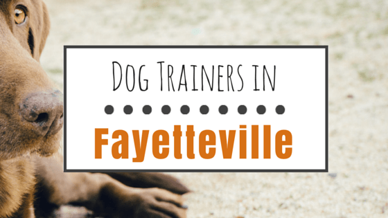 Dog Trainers in Fayetteville NC