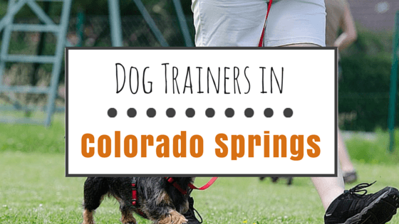Dog Trainers in Colorado Springs CO