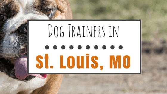 Dog trainers in St. Louis