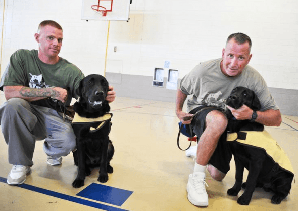 Service dogs trained by inmates