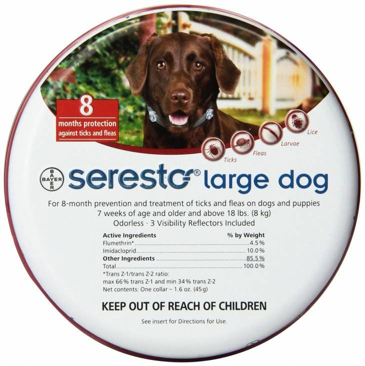 Best Flea Treatment for Dogs 4