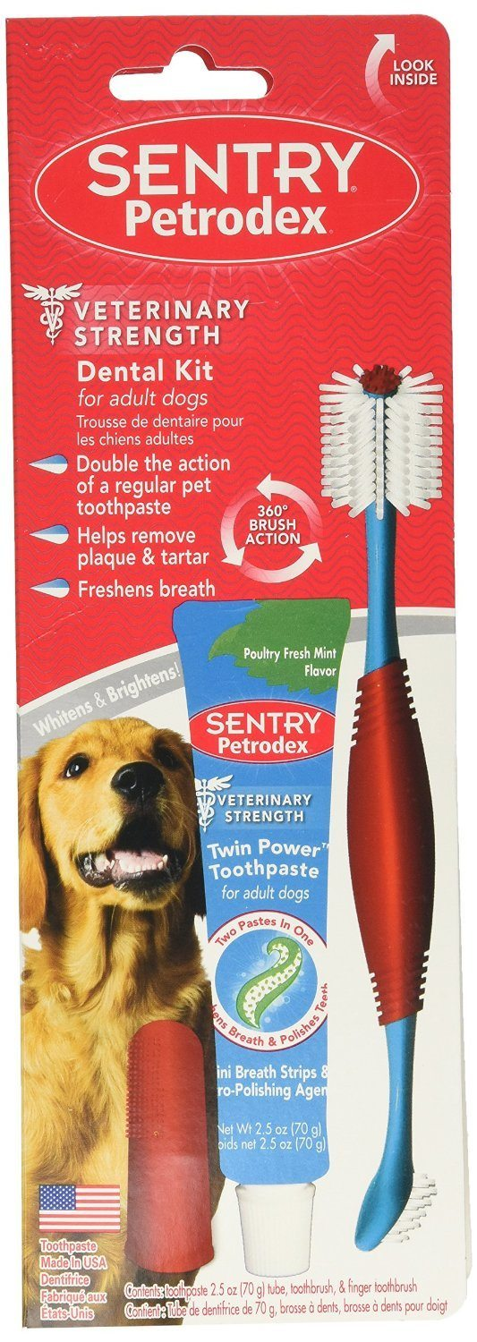 Best Dog Toothpaste 3