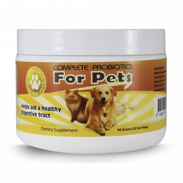 Best Probiotic For Dogs 4