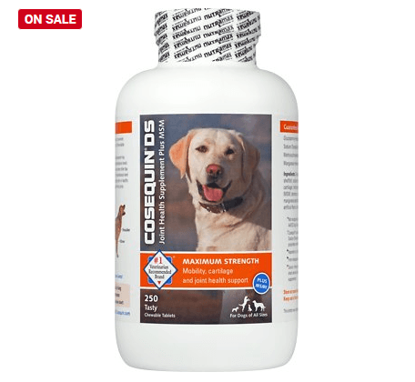 Nutramax Cosequin Maximum Strength (DS) Plus MSM Chewable Tablets Joint Health Supplement for Dogs