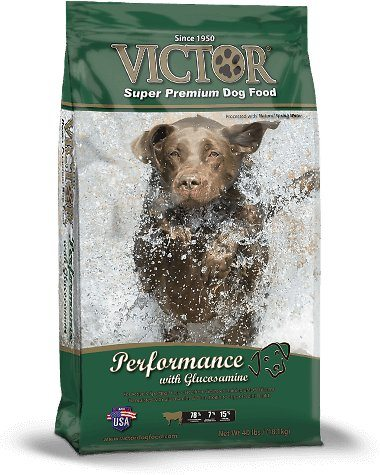 Victor Super Premium Dog Food Reviews