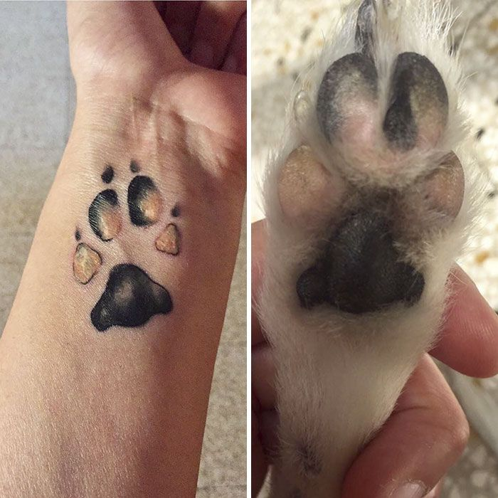 Dog Tattoo And Paw