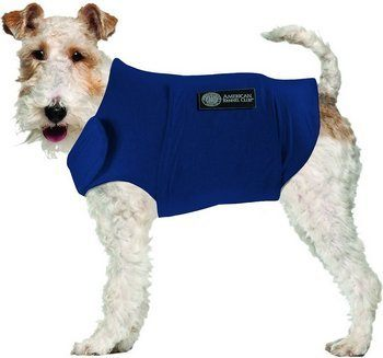 AKC Calming Coat for Dogs, Blue