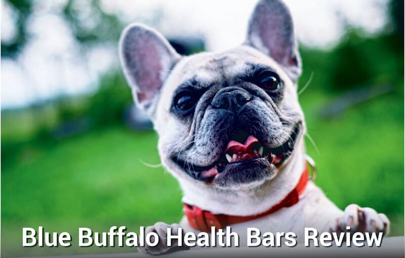 blue buffalo health bars review