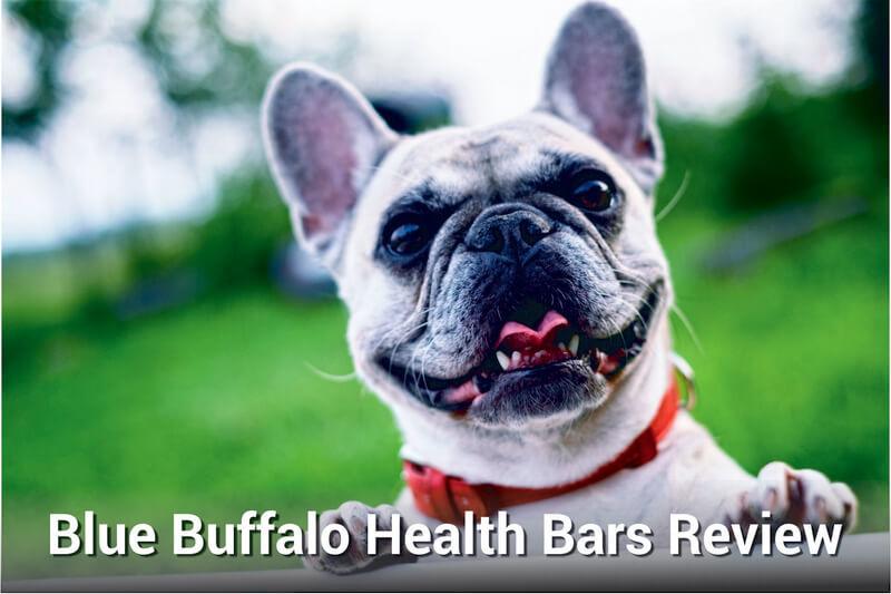 blue buffalo health bars review