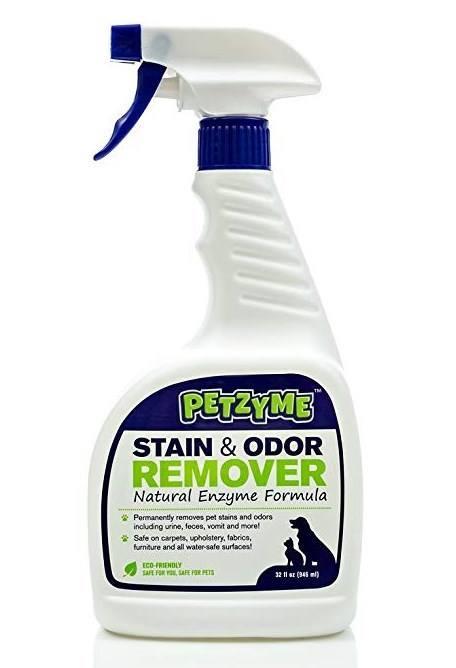dog odor remover reviews