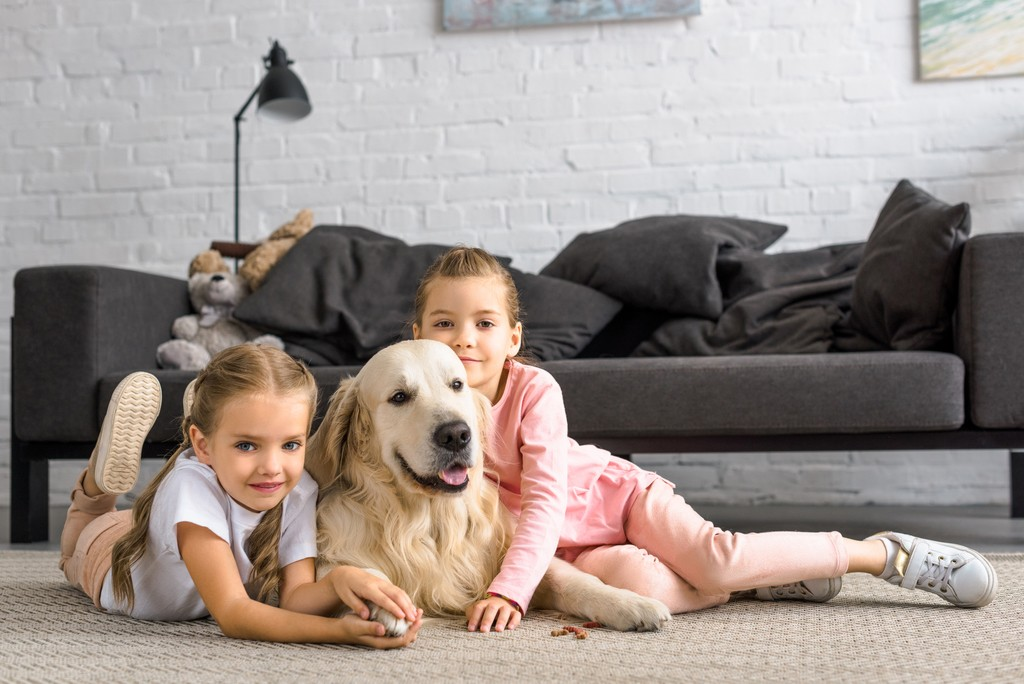 How to Choose a Dog if You Have a Little Child