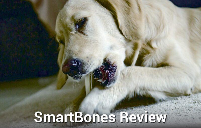 SmartBones Review
