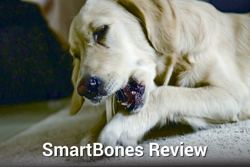 SmartBones Review