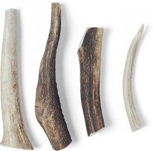 USA Bones & Chews Elk Antler