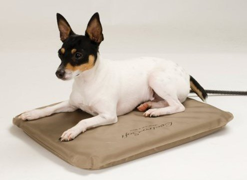 k and h lectro soft heated pet bed