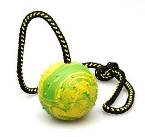 K9 Warrior Rubber Ball & Rope