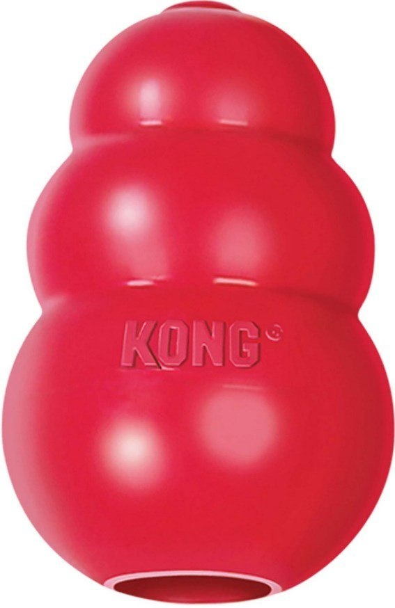kong dog chew toy review