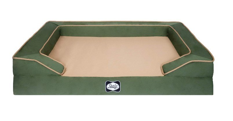 where to buy orthopedic dog beds
