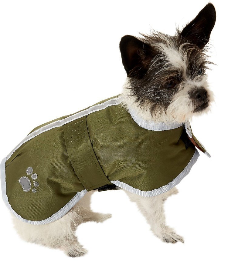 dog coat reviews