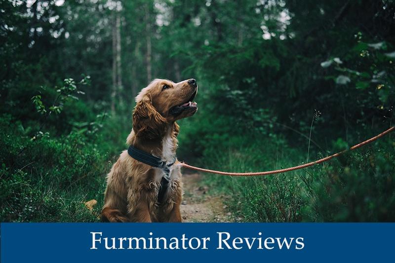 Furminator Reviews