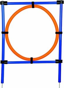 Dog Agility Training Hoop
