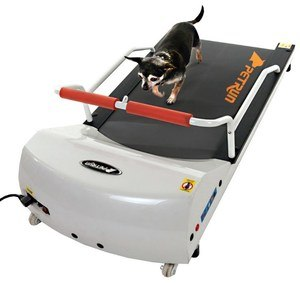 gopet dog treadmill review