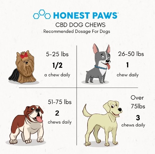cbd dosage honest paws