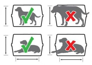 kennel size chart
