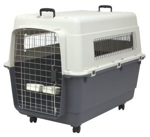 sportpet designs plastic kennels with casters