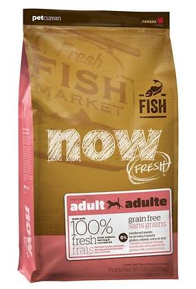 Adult Fish Recipe Dry Dog Food