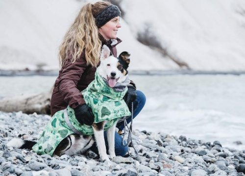 dog in a coat with a girl