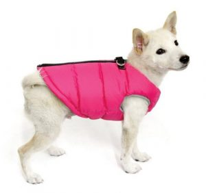 gooby padded vest dog jacket