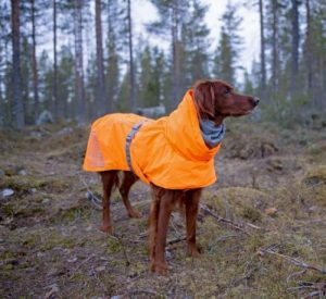 hurtta extreme warmer dog coat