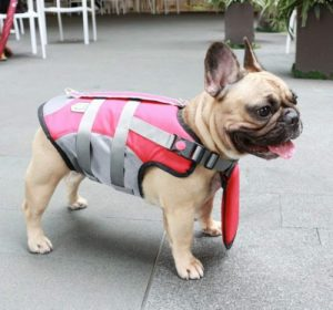ichoue dog life jackets saver swimming vest