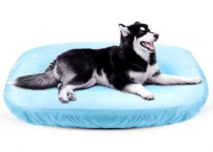 JoicyCo Dog Bed Cover Pet Bed Covers Convenient Case