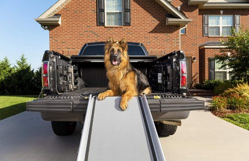 pet steps for cars