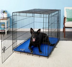 arf pet selfcooling solid gel crate mat