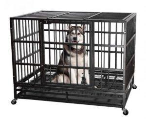 Itori Metal Cage
