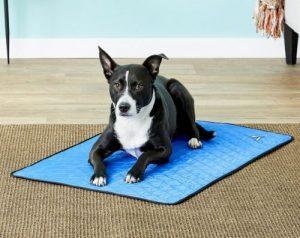 TechNiche International Evaporative Cooling Dog Pad