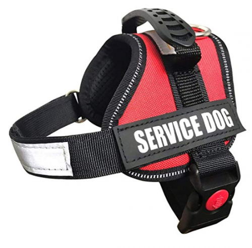 ALBCORP Service Vest and Harness for Dog