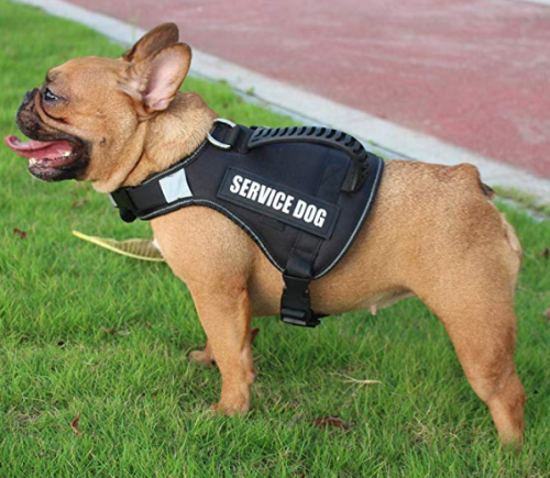 No Pull Service Dog Harness Vest