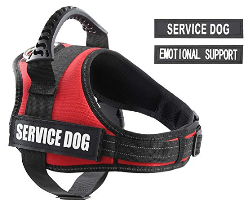 pawshoppie Service Vest for Dogs